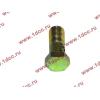 Болт пустотелый М10х1,0 (штуцер топливный) H HOWO (ХОВО) 81500070054 фото 3 Уфа
